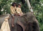 Elephant Boy - image 6