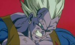 Dragon Ball Z - Film 07 - image 13