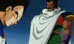 Dragon Ball Z - Film 08 - image 10