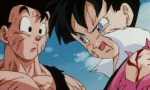 Dragon Ball Z - Film 10 - image 16
