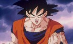 Dragon Ball Z - Film 13 - image 13