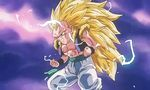 Dragon Ball Z - Film 13 - image 15