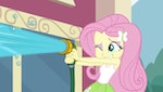 My Little Pony - Equestria Girls : Les Contes de Canterlot High - image 2